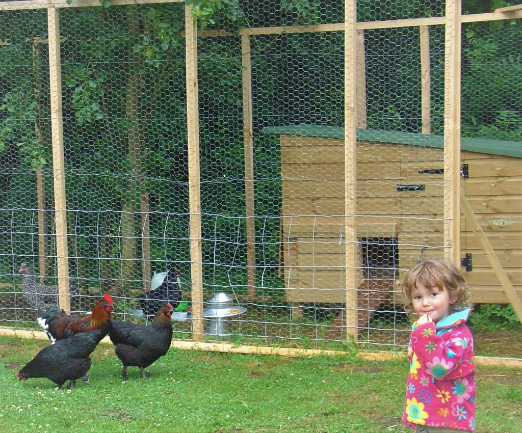 Larger Hen House and Pen