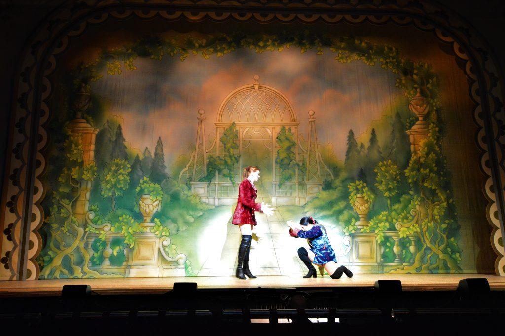 DSH Cinderella set 2 Palace Garden Front Cloth