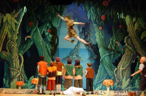 DSH Peter Pan pantomime Neverland Grassy Knoll