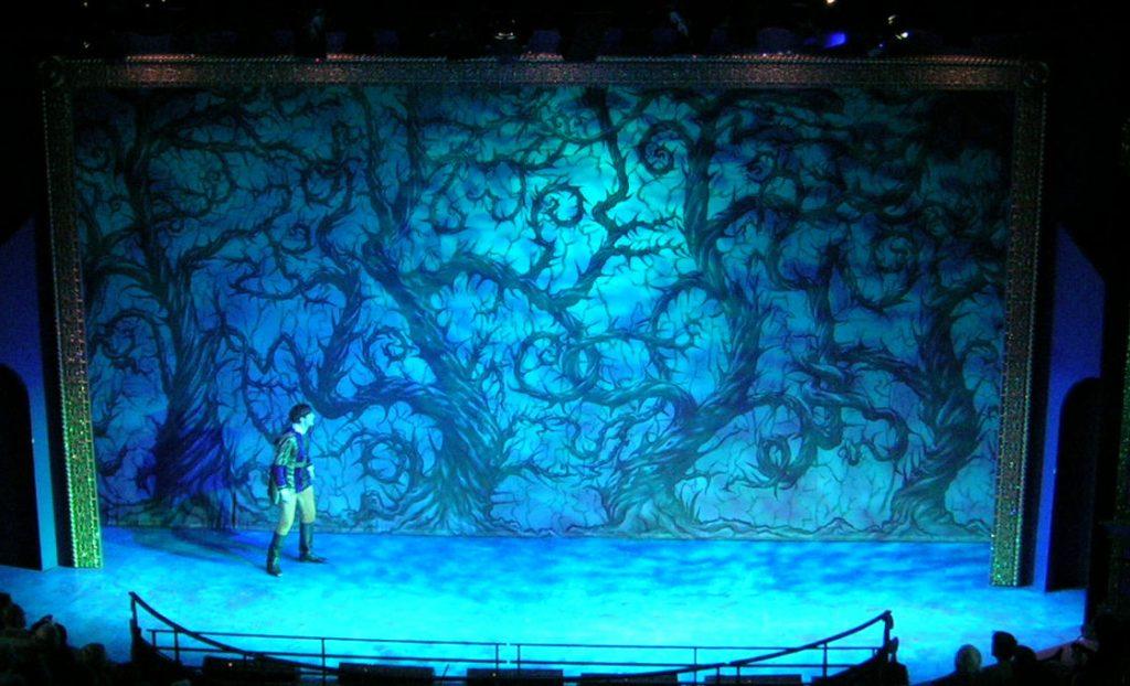 DSH Sleeping Beauty pantomime Thorny Forest gauze