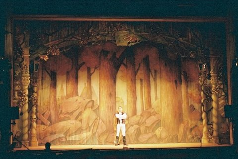 Woodland front cloth Beauty and the Beast DSH Pantomime set for hire